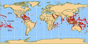 Map of coral distribution